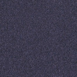Interface SD 672731 Bilberry
